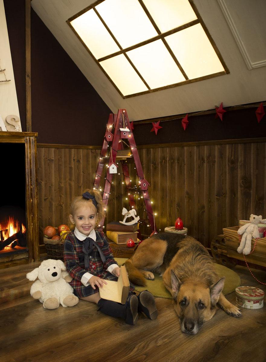foto navidad con perro